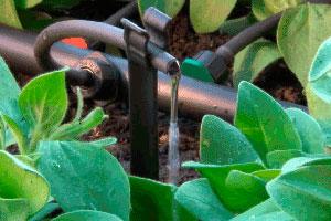 Автополив для фермерских хозяйств