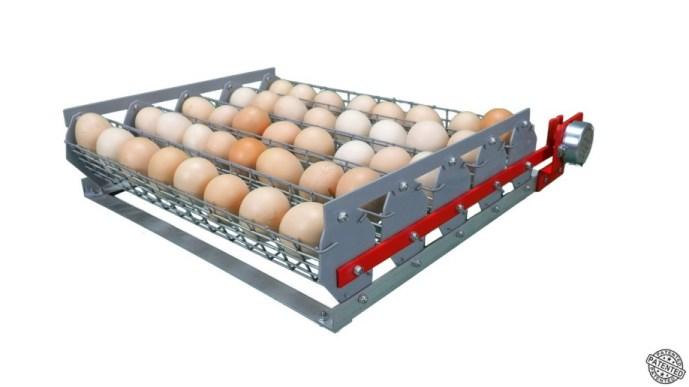 Переворот для яиц