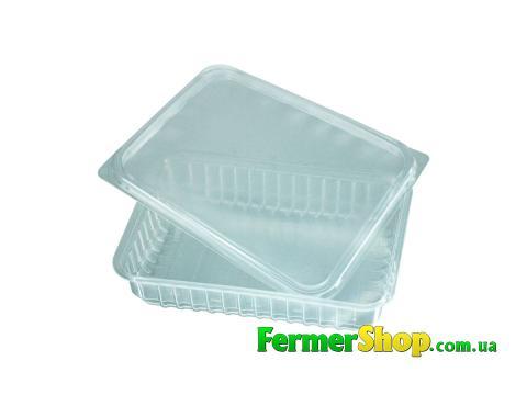 Контейнер для микрозелени с крышкой прозрачный