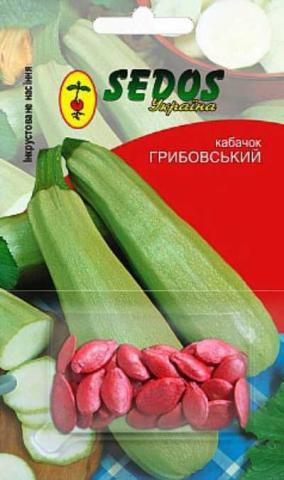 Кабачок Грибовський-37 - SEDOS
