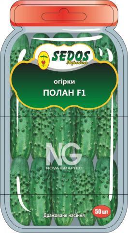 Огурцы Полан F1 (50 дражированных семян)
