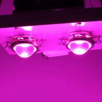 Фитолампа 100 W с линзой для роста растений, мультиспектр 380-840nm
