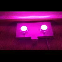 Фитолампа 100 W с линзами для роста растений, мультиспектр 400-840nm, PREMIUM