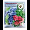 Янтарная кислота (повышает имунитет растений) 1,5 г - Швидка допомога