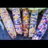 Кукурудза кольорова Чарівний Калейдоскоп (ваговий, ціна за 1 кг)