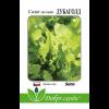 Салат листовий Дубаголд (30 шт) - Semo